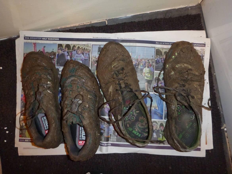 Wilkes-Steying-Stinger-Shoes-450x337.jpg